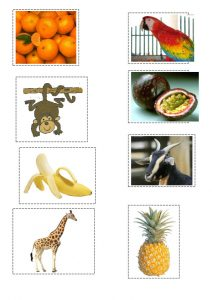 thumbnail of matching the animals and fruit